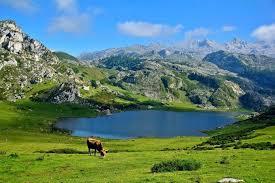 asturias1